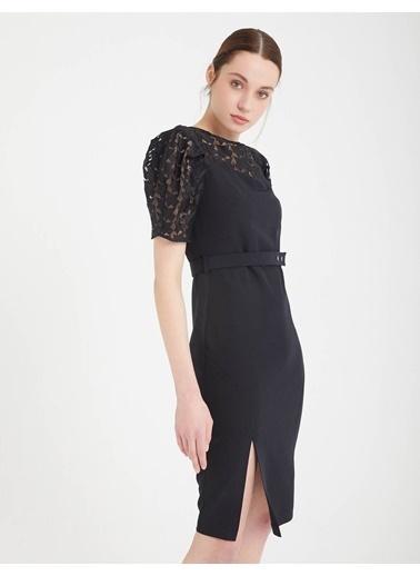 BGN Siyah - Kol Detaylı Elbise Siyah